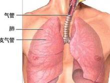 那些因素会引起呼吸系统疾病?